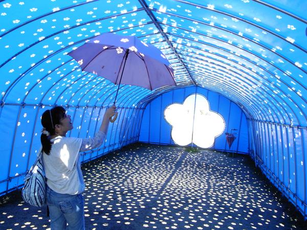 Blossom Tunnel=光の花